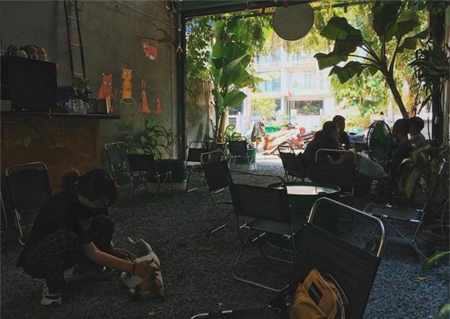 Dân sành cafe Sài Gòn chính hiệu mách bạn 5 địa chỉ thú vị để ngồi lì cả ngày không chán - Ảnh 2.