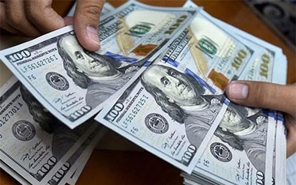 Tỷ giá ngoại tệ ngày 20/9: USD vững giá, Euro đi ngang