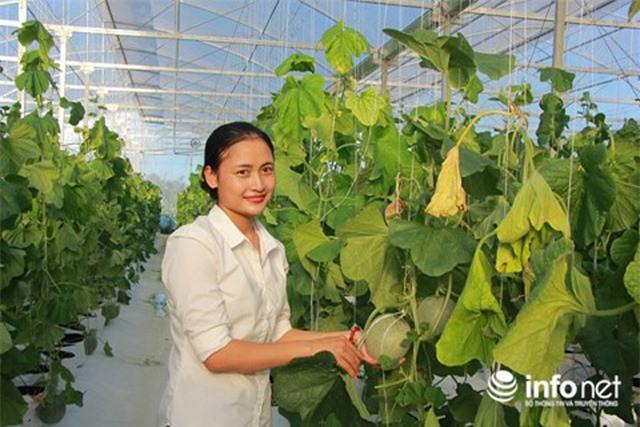 Người phụ nữ xinh đẹp trồng rau công nghệ Isarel thu tiền tỉ mỗi năm