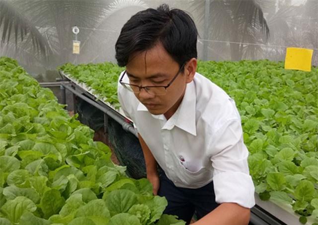 """8X Sài Gòn bỏ ngân hàng lương cao về """"nghịch nước"""" trồng rau"""