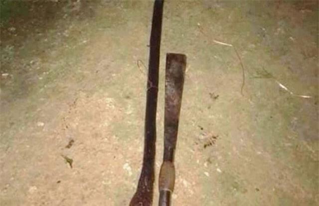 Nghệ An: Bị rắn hổ mang chúa cắn chết khi cố gắng cứu đàn gà