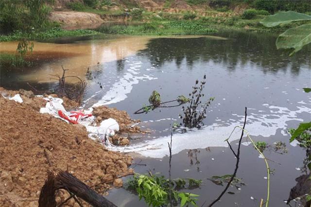 Ô nhiễm nguồn nước, cá chết trắng kênh