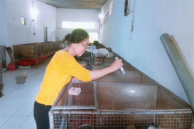 Người phụ nữ về hưu kiếm 200 triệu/năm từ mô hình nuôi chồn hương