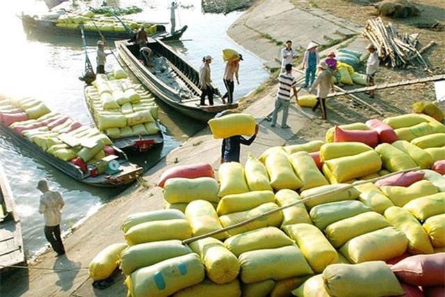 BẢN TIN TÀI CHÍNH-KINH DOANH: Xuất khẩu gạo lập kỷ lục 3 năm, vốn FDI đổ mạnh vào bất động sản