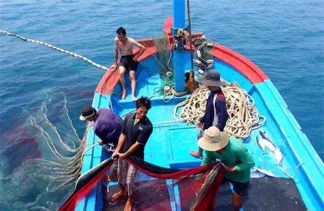 Thúc đẩy minh bạch thông tin khai thác thủy sản