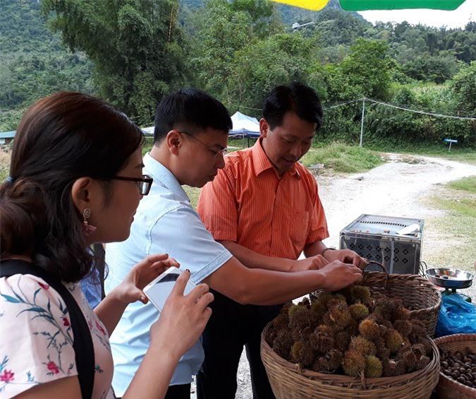 Phó Chủ tịch UBND huyện Trùng Khánh Nguyễn Mạnh Hùng giới thiệu với du khách về đặc sản hạt dẻ Trùng Khánh. Ảnh: Kim Thanh