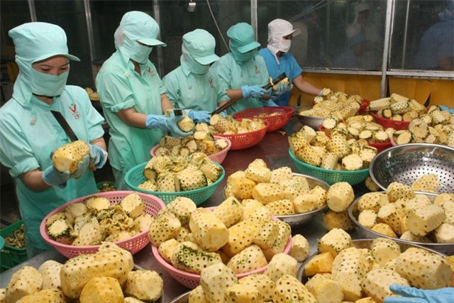 BẢN TIN TÀI CHÍNH-KINH DOANH: Thái Lan điều tra thép Việt Nam, xuất khẩu rau quả vượt dầu thô