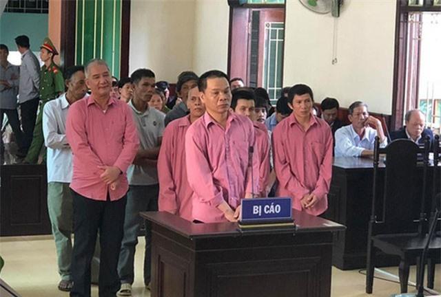 9 bị cáo phá rừng ở Bình Định lĩnh 81 năm tù