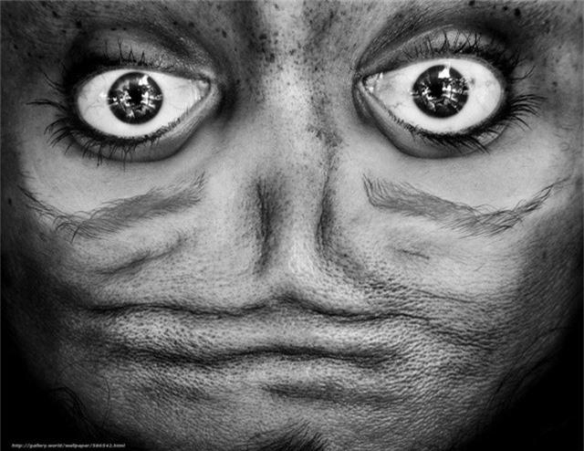 Một gương mặt đáng sợ? Nếu nhìn kỹ hơn, bạn sẽ nhận ra sự thật