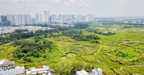 Để hạn chế trục lợi, cần kiểm soát chặt ngay từ khâu lựa chọn nhà đầu tư dự án có sử dụng đất