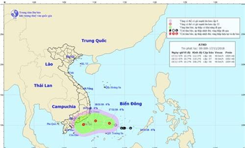 Chủ động ứng phó với áp thấp nhiệt đới và mưa lớn diện rộng
