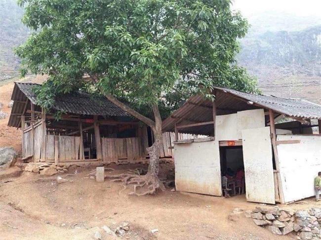 """Điểm trường  Nậm Luông (Lũn Hồ, Yên Minh, Hà Giang"""" cũ và mới"""