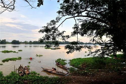 Búng Bình Thiên thông với sông Bình Di ở một con rạch nhỏ, nhưng không thông với sông Hậu. Ảnh: Diem Dang Dung.