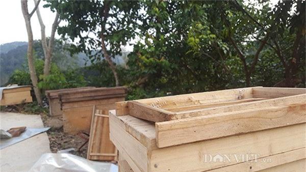 Hiện khu vườn nuôi ong của gia đình anh đã bắt đầu chật nên anh phải di chuyển đàn ong đến nhiều khu vực khác trong vùng rừng núi....