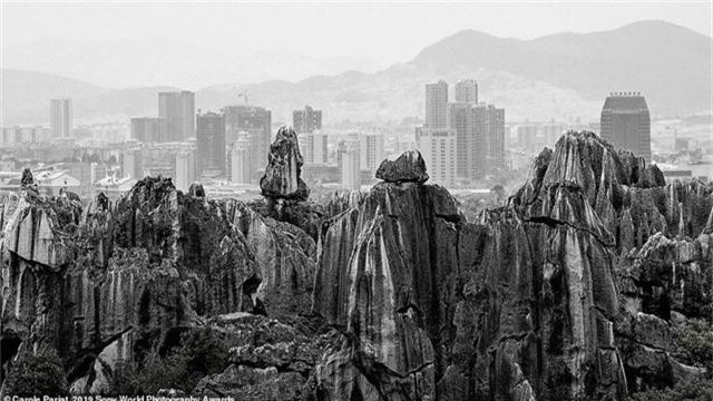 """Carole Pariat đến từ nước Pháp chụp """"rừng đá"""" nằm ở miền nam Trung Quốc. Phía xa là những tòa nhà cao tầng của đời sống hiện đại mọc lên, như một sự đối sánh giữa """"tạo vật"""" văn minh của con người với tạo vật thâm u của thiên nhiên."""