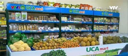Ra mắt Liên hiệp HTX tiêu thụ nông sản an toàn Việt Nam