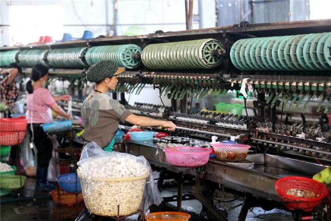 """Forbes: Việt Nam sẽ """"ngư ông đắc lợi"""" từ cuộc chiến thương mại Mỹ - Trung"""
