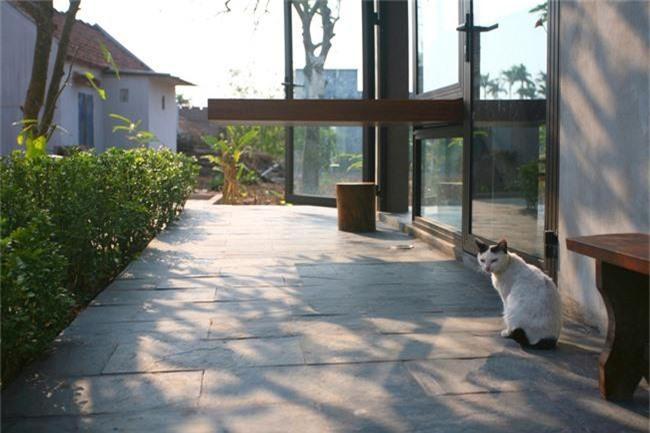 Ngôi nhà vườn ở Nam Định ngập tràn ký ức tuổi thơ do con trai xây báo hiếu mẹ - Ảnh 13.