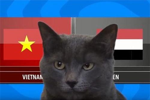 CLIP HOT (16/1): Mèo tiên tri dự đoán kết quả trận Việt Nam vs Yemen, độc tố của những loài hoa khi chơi Tết