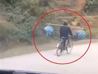 CLIP: Người đi xe đạp gánh hàng hóa khi đang chạy