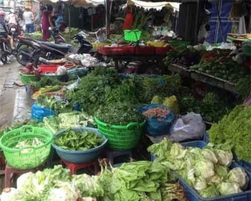 Trái cây Trung Quốc chiếm 15% chợ đầu mối Thủ Đức