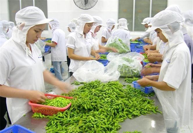 BẢN TIN TÀI CHÍNH - KINH DOANH: Loạn giá ô tô cận Tết Nguyên đán, xuất khẩu rau quả lập kỷ lục mới