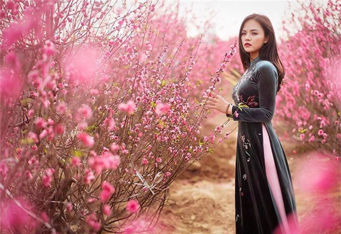 Nhân dịp Tết Kỷ Hợi, Thu Quỳnh quyết định thực hiện bộ ảnh chụp tại vườn đào Nhật Tân (Hà Nội). Áo dài truyền thống thêu hoa giúp nữ diễn viên khoe được lợi thế thân hình gợi cảm với số đo 3 vòng 84-62-93.