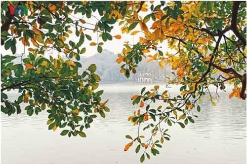 Hồ Gươm huyền ảo, lãng mạn trong lất phất mưa xuân