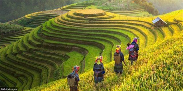 Báo Anh giới thiệu chùm ảnh tuyệt đẹp về Việt Nam