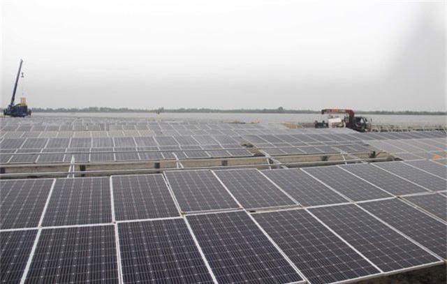 """Dự án điện mặt trời ngàn tỷ, kỳ vọng """"biến cát trắng… đẻ ra tiền""""  - 6"""