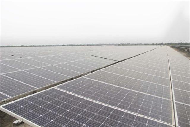 """Dự án điện mặt trời ngàn tỷ, kỳ vọng """"biến cát trắng… đẻ ra tiền""""  - 8"""