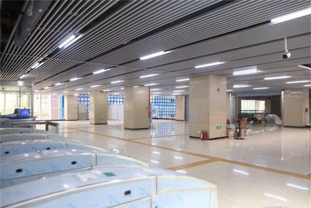 Nhà ga tàu điện Cát Linh - Hà Đông bóng loáng trước ngày vận hành - 4