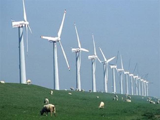 Một dự án điện gió ở Ninh Thuận (Ảnh: TL)