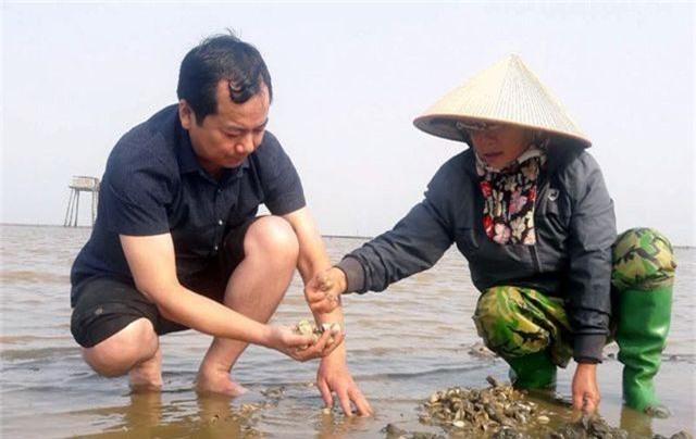 Xác định nguyên nhân ban đầu khiến ngao chết hàng loạt tại Thanh Hóa - 2