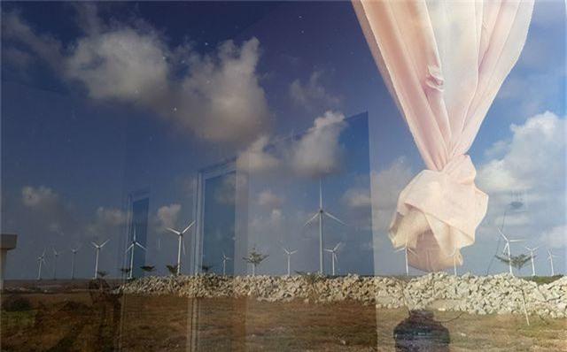 Cánh đồng quạt gió.jpg