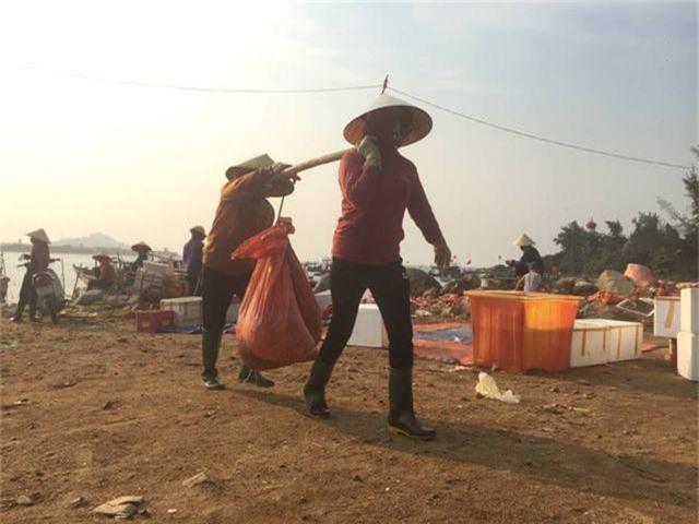 Ngư dân Hà Tĩnh phấn khởi vì trúng đậm sò lụa - 10