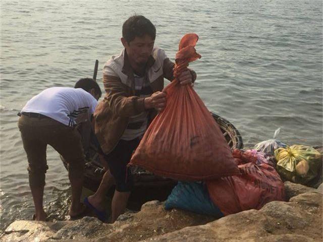 Ngư dân Hà Tĩnh phấn khởi vì trúng đậm sò lụa - 5