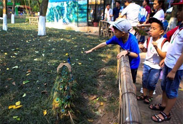 Vườn thú, công viên Hà Nội đông nghịt người trong ngày nghỉ lễ - 2