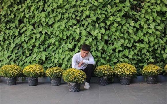 Hồ Quang Hiếu đáp trả fan câu hỏi: Làm ca sĩ mà sao mua được nhiều đất đến vậy?, lý do ai cũng phải ngã ngửa - Ảnh 1.