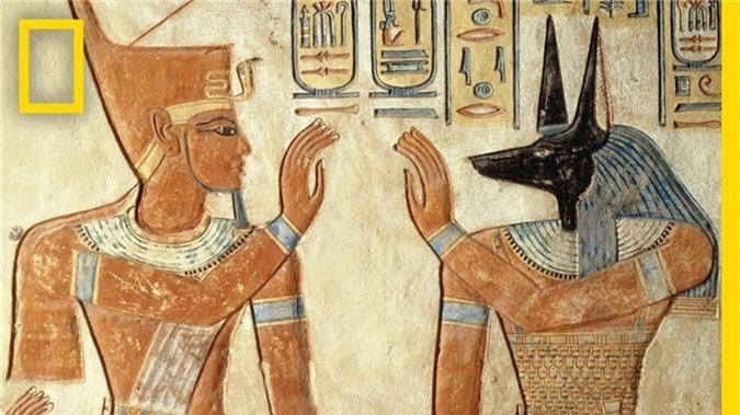 Su that qua soc ve dien mao my nam cua Pharaoh Ai Cap-Hinh-3