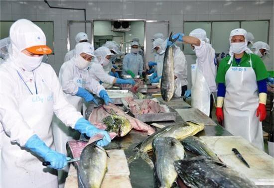 Với kim ngạch xuất khẩu đạt 9 tỷ USD trong năm 2018, thủy sản là ngành có nhiều doanh nghiệp được vinh danh về xuất khẩu.