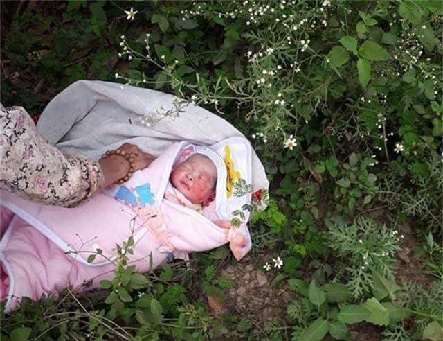 Bé gái 2 ngày tuổi bị bỏ rơi trong rừng - 1