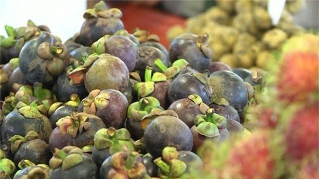 Trà Vinh: Trái cây đặc sản được mùa, được giá - Ảnh 1.