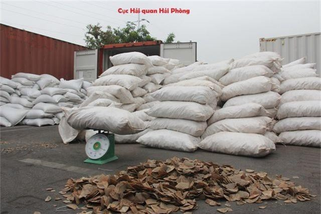 Phát hiện hơn 8 tấn vảy tê tê vận nhập lậu về cảng - 2