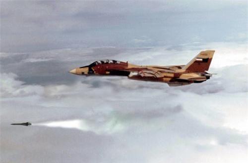 Máy bay chiến đấu F-14 được trang bị một pháo 6 nòng cỡ 20mm (với 675 viên đạn) và 10 giá treo cho phép mang tổng cộng 8 tên lửa không đối không tầm ngắn – trung hoặc tối đa 6 tên lửa đối không tầm siêu xa AIM-54 Phoenix có tầm phóng cực đại 190km.