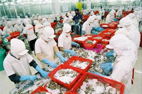 Nhân dân tệ mất giá ảnh hưởng bất lợi đến xuất khẩu thủy sản Việt Nam