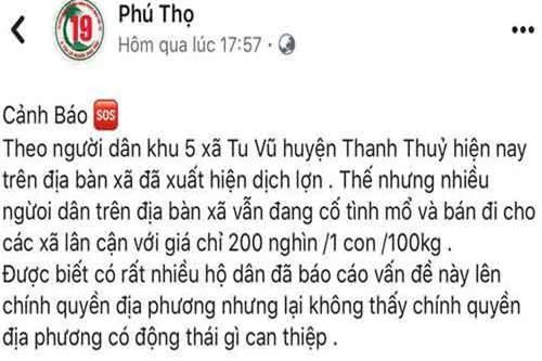 Phú Thọ: Triệu tập thanh niên tung tin thất thiệt về dịch tả lợn trên Facebook