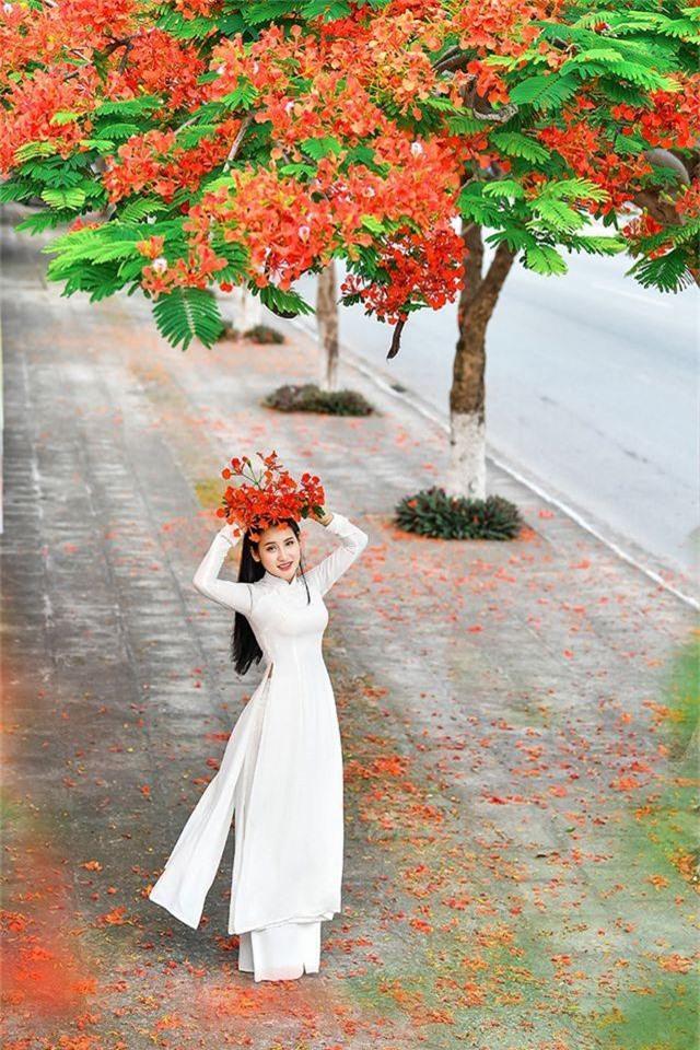 Cô gái xinh đẹp thả hồn trên con đường hoa phượng đỏ Hải Phòng - 1