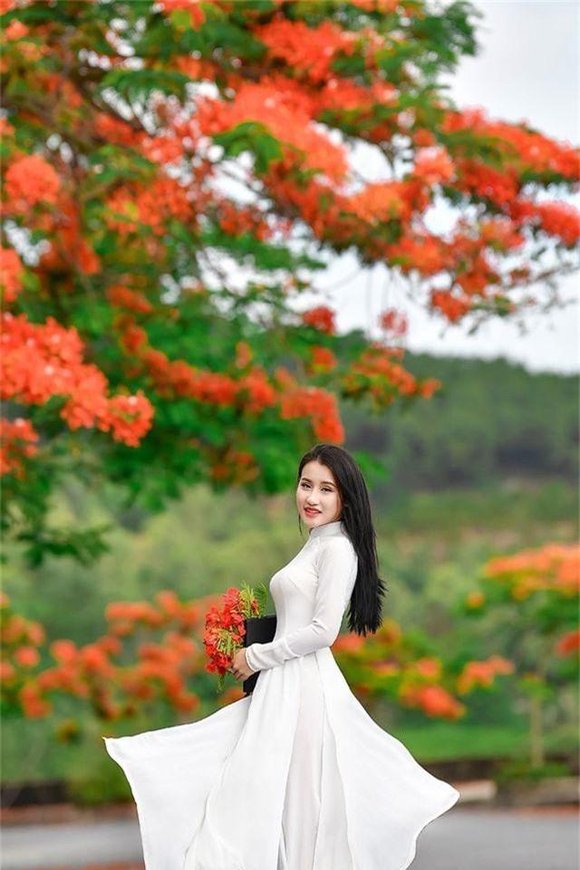 Cô gái xinh đẹp thả hồn trên con đường hoa phượng đỏ Hải Phòng - 11