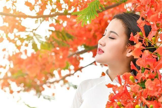 Cô gái xinh đẹp thả hồn trên con đường hoa phượng đỏ Hải Phòng - 21